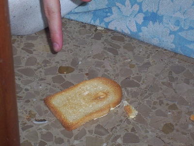 0117-bread_always_falls_on_its_butteredside.jpg