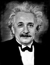 0383-einstein-formal_portrait-35.jpg